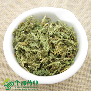 Japanese Clubmoss Herb / 伸筋草 / Shen Jin Cao